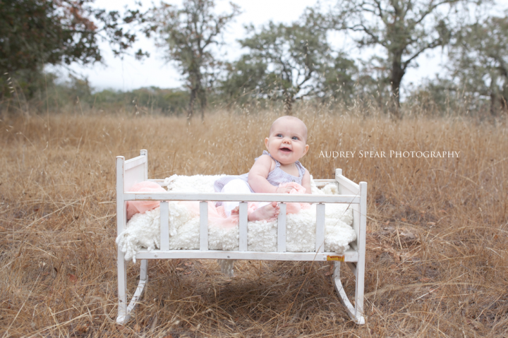 Petaluma Baby Photography