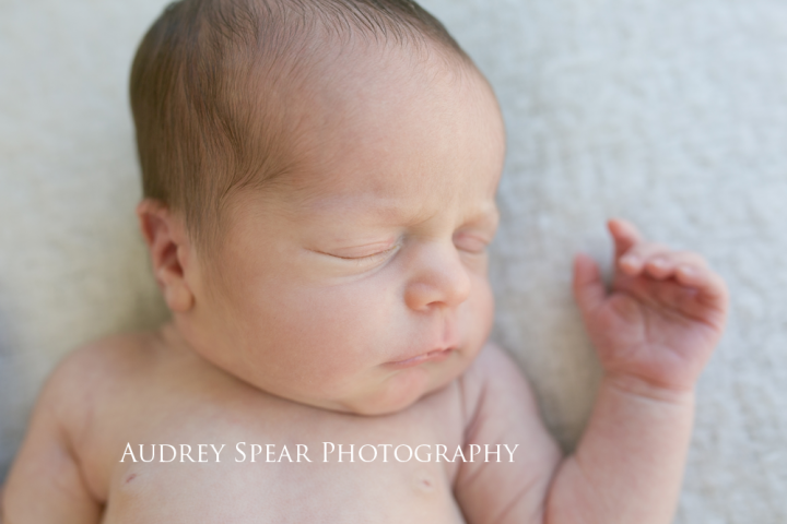 Larkspur-Baby-Photographer
