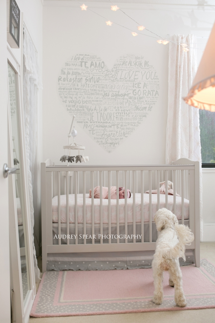 San Rafael Newborn Baby Photography