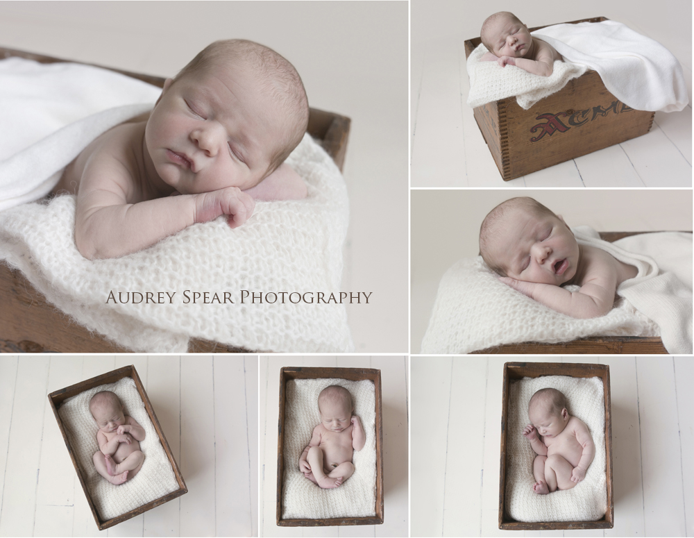 Larkspur-Baby-Photography