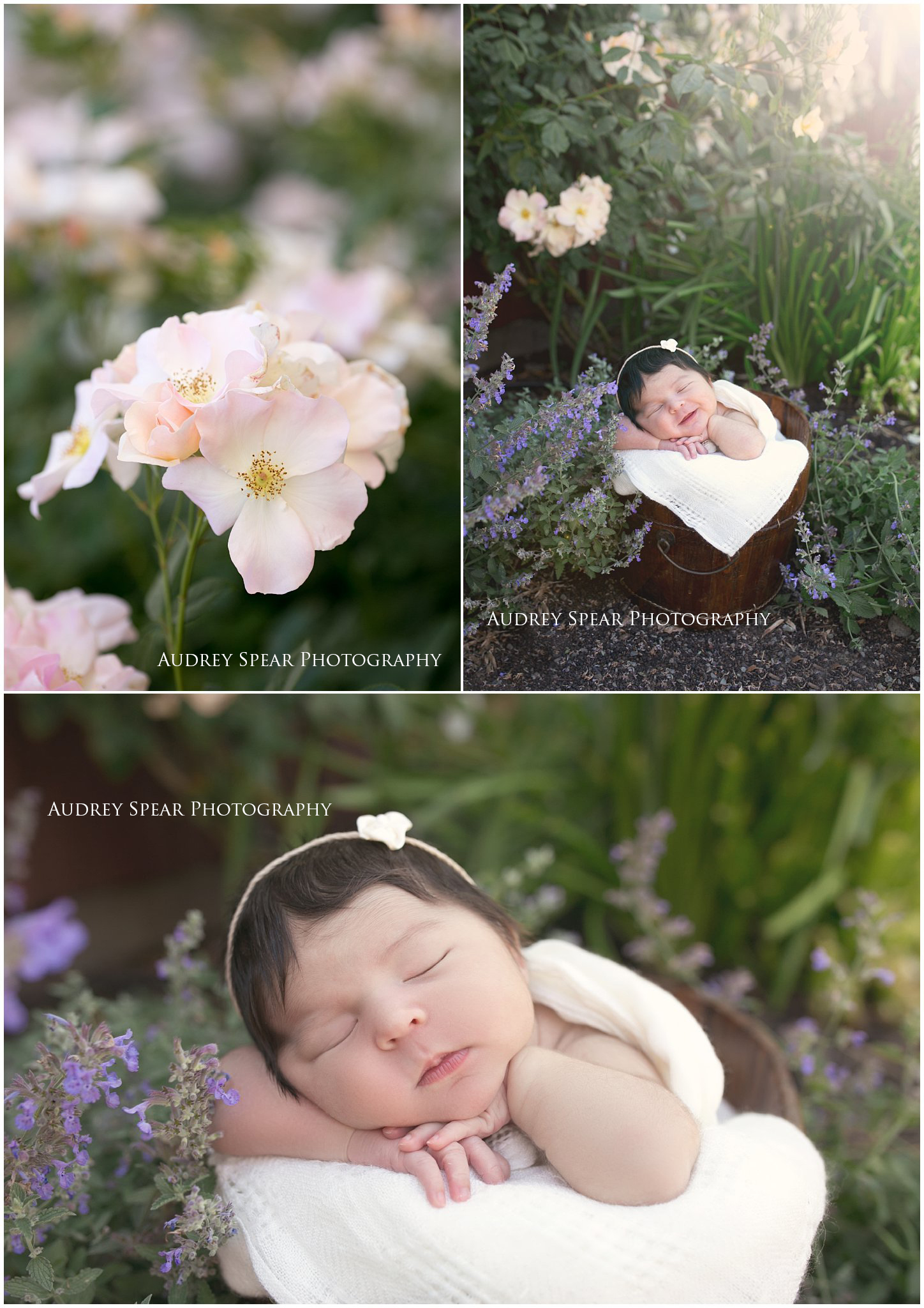 Novato-Outdoor-Newborn-Photography